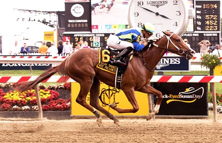 Vertical Oak wins the 2017 Miss Preakness Stakes