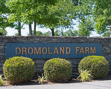Entrance to Dromoland Farm near Lexington.  May 8, 2017 Dromoland in Lexington, Ky.