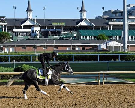Tapwrit Derby and Oaks contenders in the morning at Churchill Downs  May 2, 2017 Churchill Downs in Louisville, Ky.