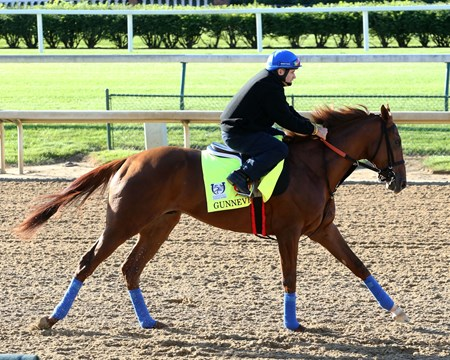 Gunnevera - Gallop - Churchill Downs - 050217