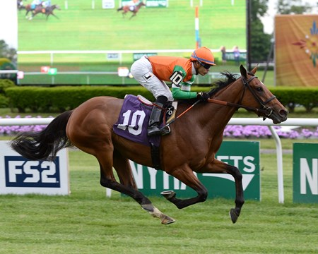 Rubilinda - Maiden Win, Belmont Park, May 27, 2017  First US winner for Frankel