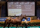 Magic Millions Broodmare Sale Continues Climb