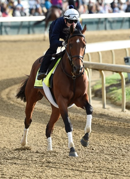 Practical Joke gallops at Churchill Downs May 3, 2017 in Louisville, KY.