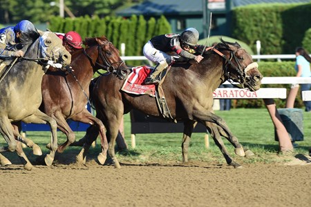 Shaman Ghost wins the 2016 Woodword