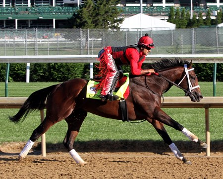 Classic Empire on the track at Churchill Downs on May 2, 2017 preparing for the Kentucky Derby.