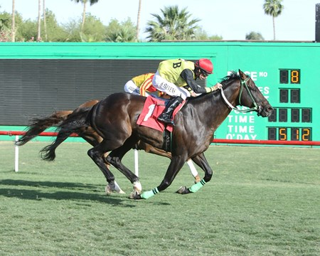 Go Max wins the 2017 Hasta La Vista Handicap