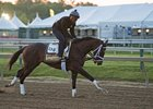 Always Dreaming gallops under Nick Bush May 17 at Pimlico Race Course