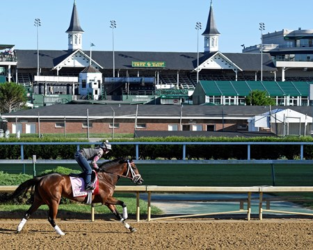 Salty Derby and Oaks contenders in the morning at Churchill Downs  May 2, 2017 Churchill Downs in Louisville, Ky.