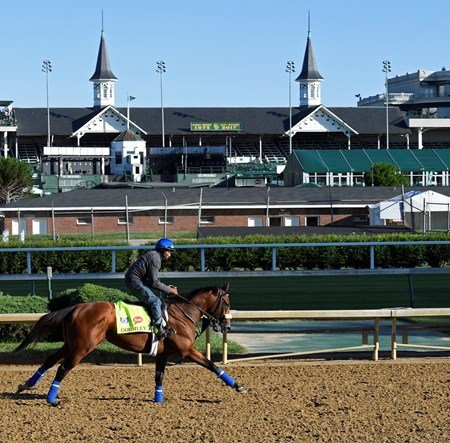 Gormley Derby and Oaks contenders in the morning at Churchill Downbs  May 2, 2017 Churchill Downs in Louisville, Ky.