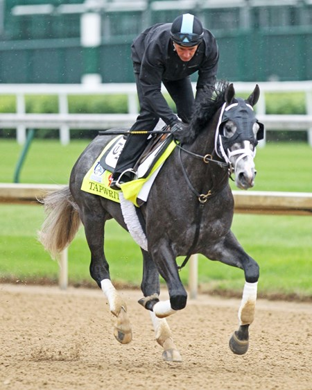 Tapwrit - Gallop - Churchill Downs - 05-04-17