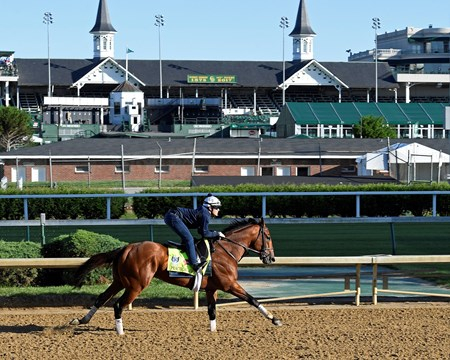 Practical Joke Derby and Oaks contenders in the morning at Churchill Downs  May 2, 2017 Churchill Downs in Louisville, Ky.