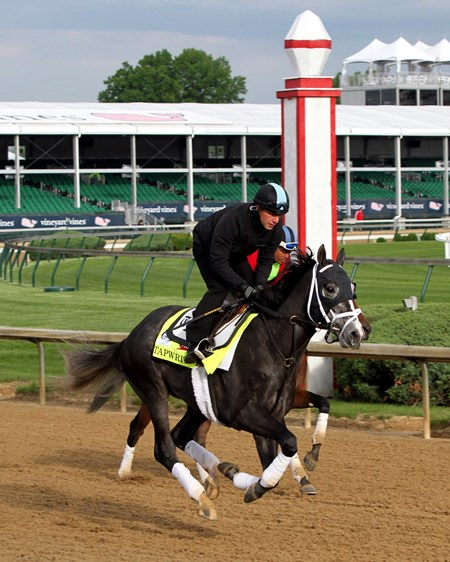 Tapwrit on the track at Churchill Downs on May 3, 2017.