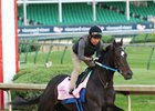 Ever So Clever training at Churchill Downs ahead of the Kentucky Oaks