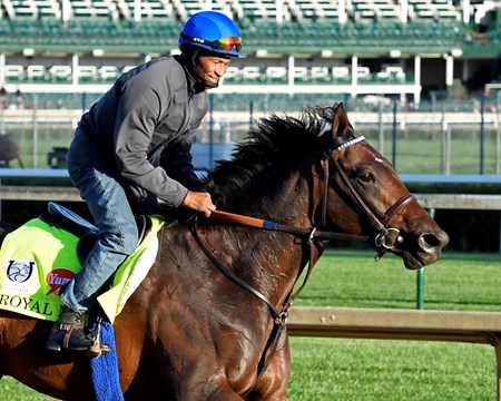 Royal Mo Derby and Oaks contenders in the morning at Churchill Downs  May 2, 2017 Churchill Downs in Louisville, Ky.