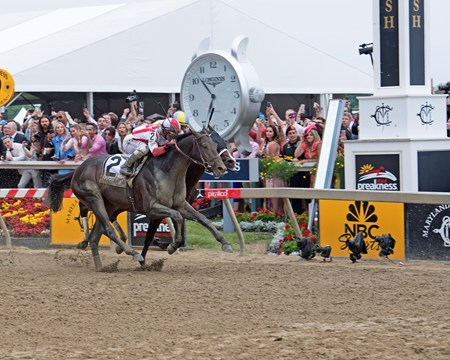 Cloud Computing wins the 2017 Preakness Stakes (G1)