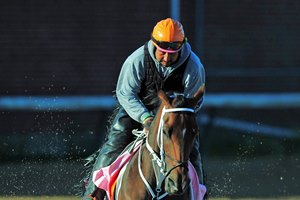 Miss Sky Warrior gallops at Churchill Downs ahead of the Kentucky Oaks May 2
