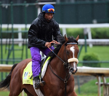 Gormley out for exercise Wednesday morning May 4, 2017 in preparation for Saturday's 143rd running of the Kentucky Derby at Churchill Downs in Louisville, Kentucky.