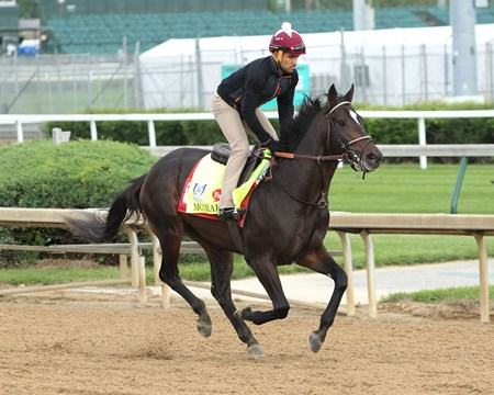 McCraken - Gallop - Churchill Downs - 05-03-17