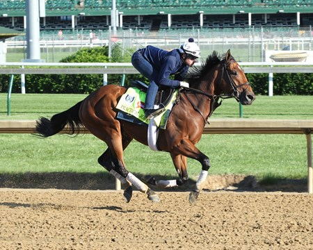Practical Joke - Gallop - Churchill Downs - 05-02-17