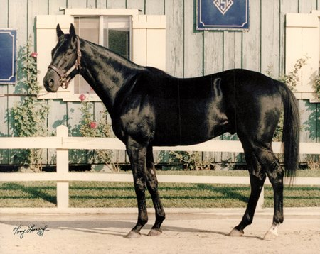 Devil His Due in 1994, the year he won the Suburban Handicap for the second time
