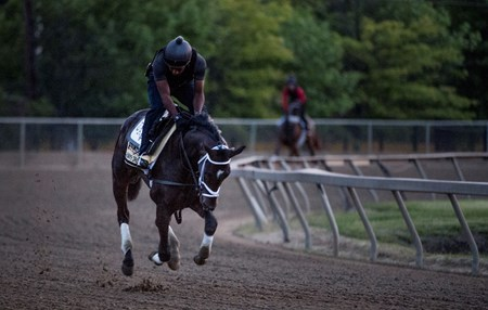 Always Dreaming goes out for his morning exercise with his exercise rider Nick Bush two days before the Preakness Stakes at Pimlico Race Course Thursday May 18, 2017 in Baltimore, Maryland.