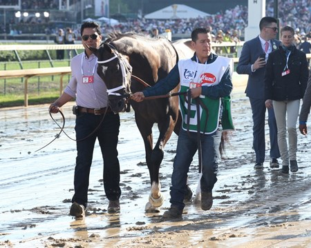 Always Dreaming wins the 2017 Kentucky Derby (G1)