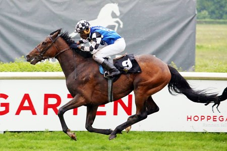 Red Cardinal wins the Oleander-Rennen at Hoppegarten