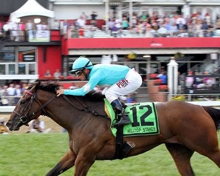 Happy Mesa with Javier Castellano win the 45th Running of the Hilltop Stakes at Pimlico on May 19, 2017.