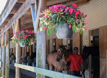 Fasig-Tipton Midlantic 2-year-olds in training sale begins  May 22