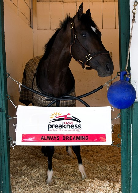 Always Dreaming - Pimlico - May 12, 2017