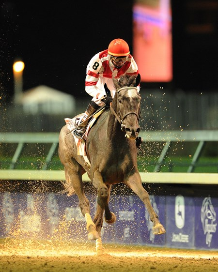 Unrivaled Belle comes home in the Breeders' Cup Ladies Classic under the lights at Churchill Downs.