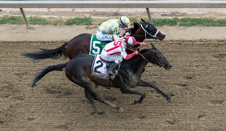 Cloud Computing passing Classic Empire down the stretch to win the Preakness