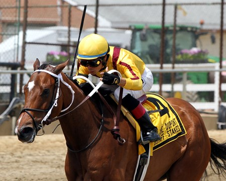 Terra Promessa with Jose Ortiz win the 24th Running of the Allaire DuPont Distaff Stakes at Pimlico on May 19, 2017.