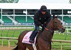 Mopotism training at Churchill Downs before the Kentucky Oaks