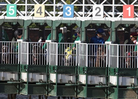 Always Dreaming (5) in the starting gate for the Kentucky Derby on Saturday, May 6th, 2017 at Churchill Downs.