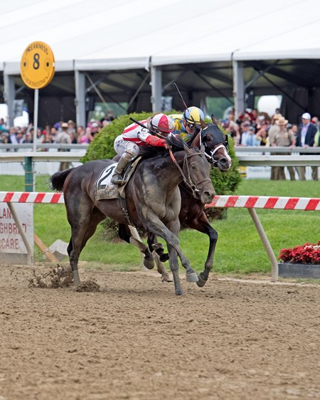 Cloud Computing with Javier Castellano up wins the Preakness Stakes (gr. I) for Klaravich Stables and William Lawrence, and trainer Chad Brown. May 20, 2017 Baltimore in Pimlico, Maryland.
