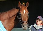 Irish War Cry inherited the favorite's role when Classic Empire was declared out of the Belmont Stakes