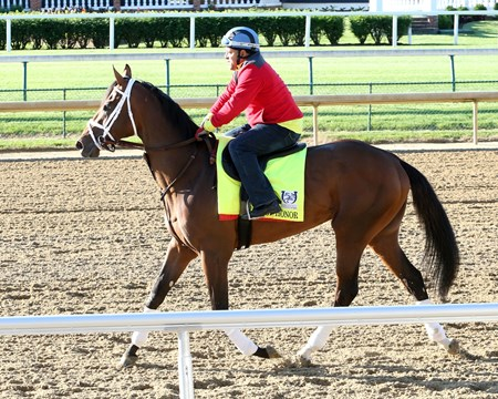 State of Honor - Gallop - Churchill Downs - 05-02-17