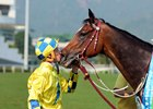 New Zealand-bred Werther gets a kiss from jockey Hugh Bowman