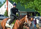 Patch heads to the track May 1 at Churchill Downs
