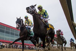 Always Dreaming (inside), Classic Empire (outside), and Cloud Computing (behind) race in the 2017 Preakness Stakes