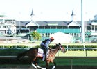 Miss Sky Warrior gallops at Churchill Downs before last year's Kentucky Oaks