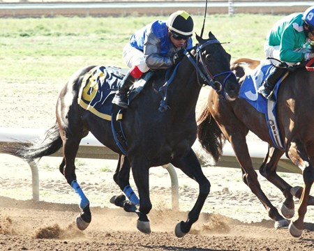 Forest Mouse wins the 2017 SunRay Park and Casino Handicap