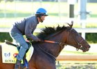 Royal Mo training at Churchill Downs May 2