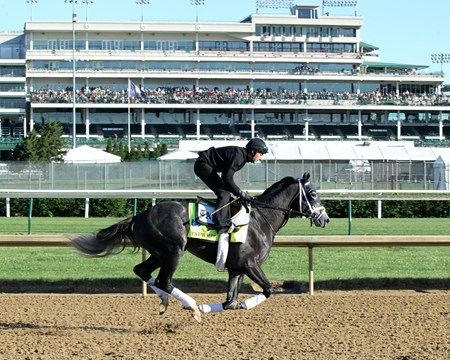 Tapwrit - Gallop - Churchill Downs - 05-02-17