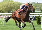 Sea Calisi wins back-to-back editions of Belmont's Sheepshead Bay