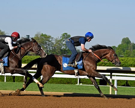 Multiplier with Brendan Walsh in company with War Union has their final work at Keeneland