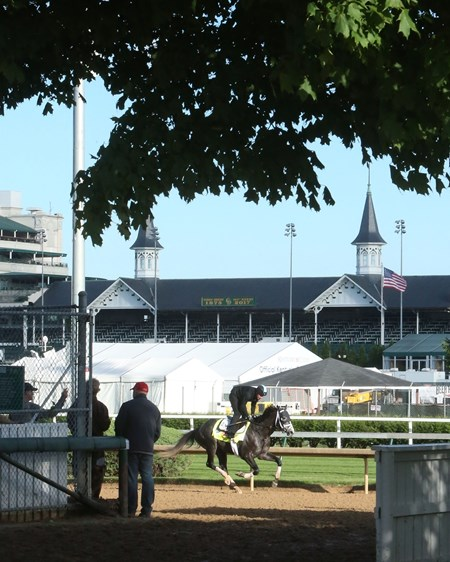 Tapwrit - Gallop - Churchill Downs - 05-01-17
