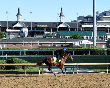 Gunnevera Derby and Oaks contenders in the morning at Churchill Downs  May 2, 2017 Churchill Downs in Louisville, Ky.