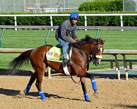 Gormley Derby and Oaks contenders in the morning at Churchill Downs  May 2, 2017 Churchill Downs in Louisville, Ky.